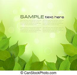 feuilles, arrière-plan vert, nature