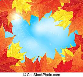 feuilles, automne, érable, cadre