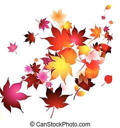 feuilles automne, air