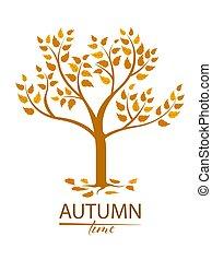 feuilles automne, arbre, coloré