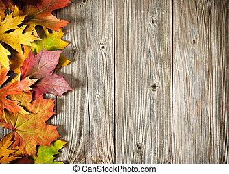 feuilles automne, arrière-plan coloré