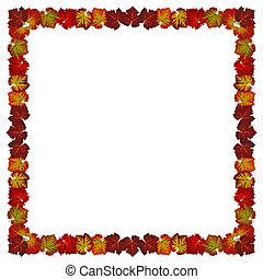 feuilles automne, cadre, vignes, coloré