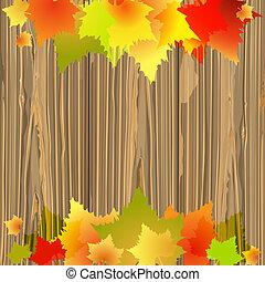 feuilles automne