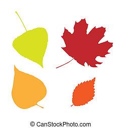 feuilles automne, ensemble, isolé
