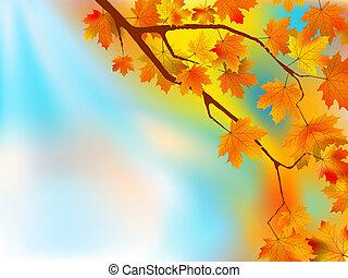 feuilles automne, ensoleillé, fond