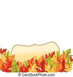 feuilles automne, fond blanc