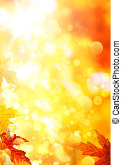 feuilles automne, fond jaune