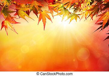 feuilles automne, fond, rouges