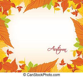 feuilles automne, frontière