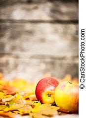 feuilles automne, frontière, pommes