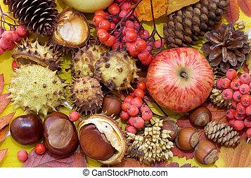 feuilles automne, fruits., fond