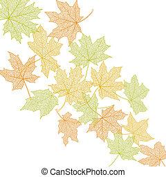 feuilles automne, gabarit
