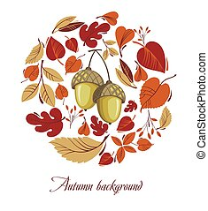 feuilles automne, gland