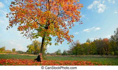 feuilles automne, jouer, enfant