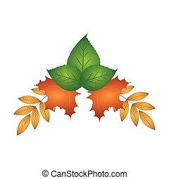 feuilles automne, ornement