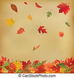 feuilles automne, papier, vieux