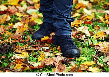 feuilles automne, par, marche