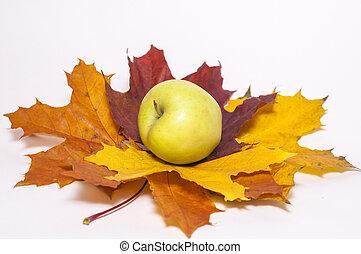 feuilles automne, pomme verte, érable