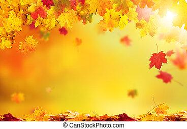 feuilles automne, résumé, tomber, fond