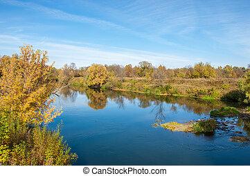 feuilles automne, rivière, arbre, jaune