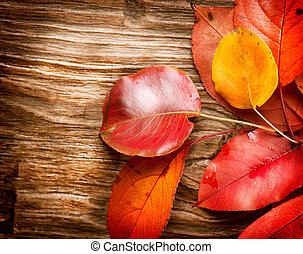 feuilles automne, sur, bois, arrière-plan., automne