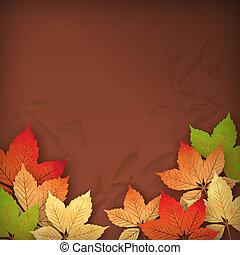 feuilles automne, vecteur, automne