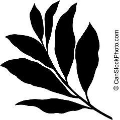feuilles, baie
