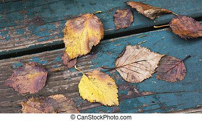 feuilles, baissé