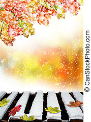 feuilles, baissé, neige, érable