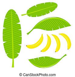 feuilles, banane