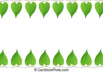 feuilles, blanc vert, fond, cadre