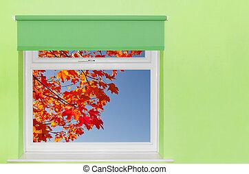 feuilles bleu, ciel, automne, vue fenêtre