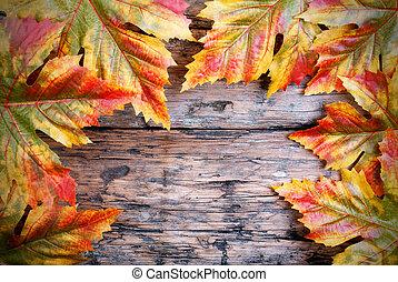 feuilles, bois, érable