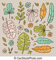 feuilles, botanique, vecteur, ensemble, main, herbarium, dessiné, illustration