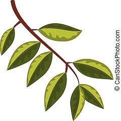 feuilles, branche, arbre