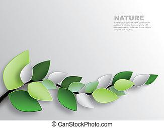 feuilles, branche