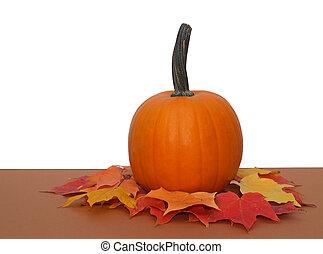 feuilles, citrouille, automne