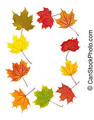 feuilles, coloré, automne, frontière