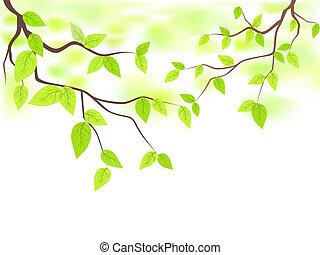 feuilles, copie, espace vert