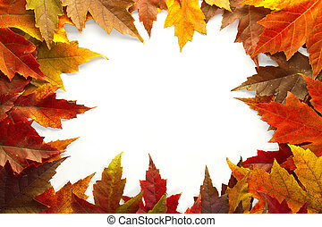 feuilles, couleurs, 2, automne, mélangé, frontière, érable