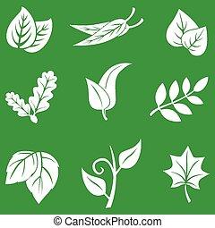 feuilles, ensemble, arrière-plan vert