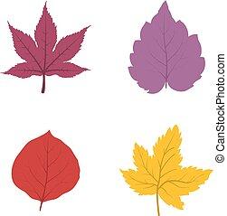 feuilles, ensemble, icône