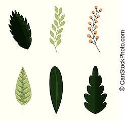 feuilles, ensemble, vert, nature