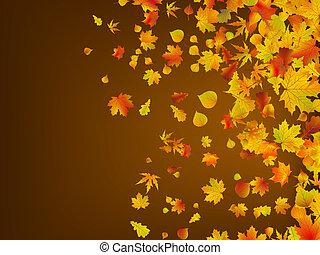 feuilles, eps, automne, arrière-plan., 8, baissé
