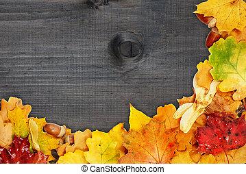 feuilles, fond, multicolore