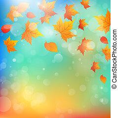 feuilles, fond, tomber, érable