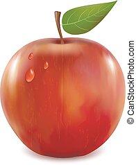 feuilles, gouttes, pommes vertes, rouges