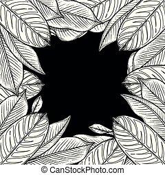 feuilles, graphique, heliconia