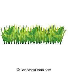 feuilles, herbe, vert, icône