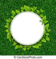 feuilles, herbe, vert,  texture